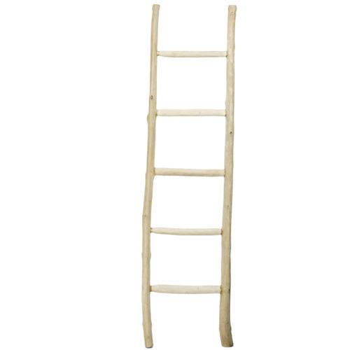 Ladder  TKD-010