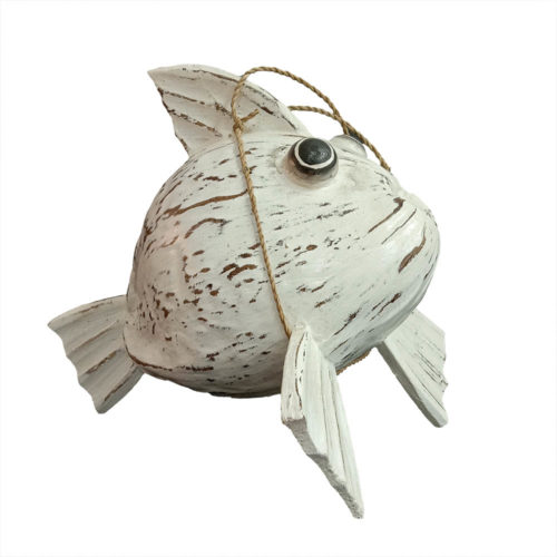 Coconut Fish  BFY-001