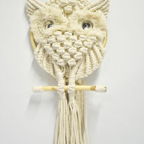 Owl Singgle DHL-005